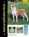 American Staffordshire Terrier (Excellence)