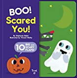 Boo! Scared You!: Includes 10 Big and Scary Flaps: 2 (Big Flaps)