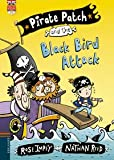 Pirate Patch and the Black Bird Attack: 3