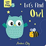 Let's Find Owl (Lift-The-Flap Books)