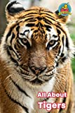 All About Tigers (Read Together) (English Edition)