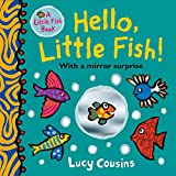 Hello, Little Fish! A mirror book