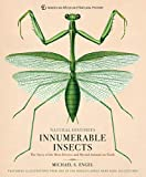 Innumerable Insects: The Story of the Most Diverse and Myriad Animals on Earth (Natural Histories) (English Edition)