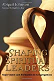Shaping Spiritual Leaders: Supervision and Formation in Congregations by Abigail Johnson (2007-08-17)