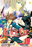 Black Cat, Vol. 19: As a Sweeper (English Edition)
