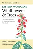 An Illustrated Guide to Eastern Woodland Wildflowers and Trees: 350 Plants Observed at Sugarloaf Mountain, Maryland (Center Books)