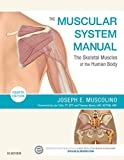 The Muscular System Manual - E-Book: The Skeletal Muscles of the Human Body (English Edition)