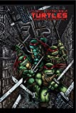 Teenage Mutant Ninja Turtles: The Ultimate B&W Collection Vol. 4 (English Edition)