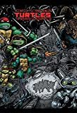 Teenage Mutant Ninja Turtles: The Ultimate B&W Collection Vol. 2 (English Edition)